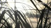 戦後70年の地平から「久米島での住民虐殺」