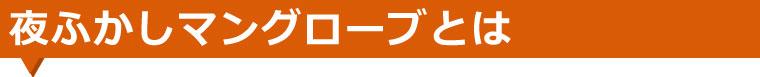 yohukashi_obi2