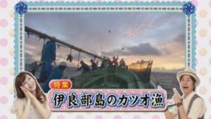 ①ラインナップカツオ漁