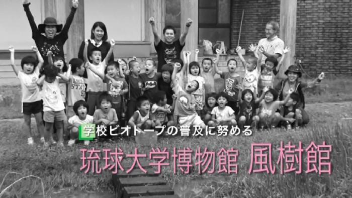 琉球大学博物館 風樹館