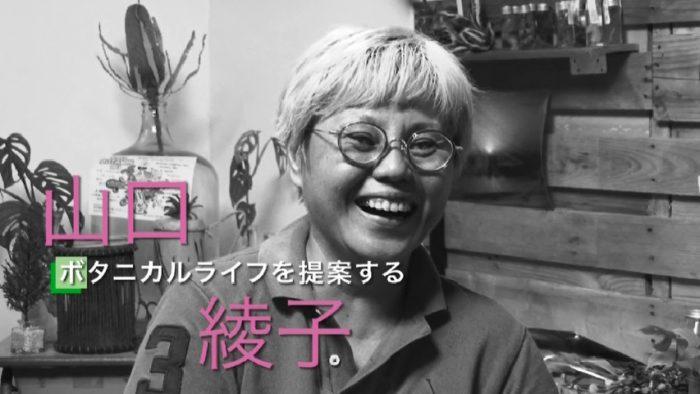 山口綾子さん