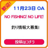 NO FISHING! NO LIFE!