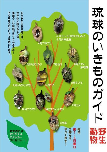 H29琉球のいきものガイドスケジュール_5