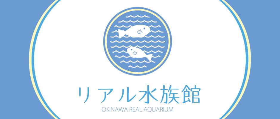 リアル水族館 ブセナの海中をライブ配信